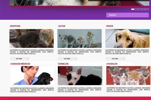 Diseño de página web de BYDA
