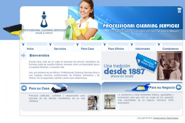 Diseño web cleaning