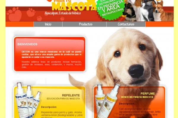 Diseño de pagina web gatzen
