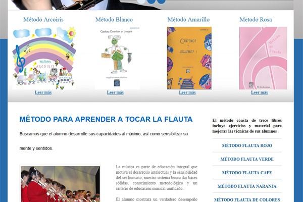 Diseño web de Grupo Danasa