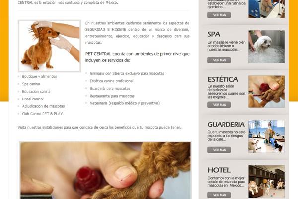 Diseño web de Pet Central