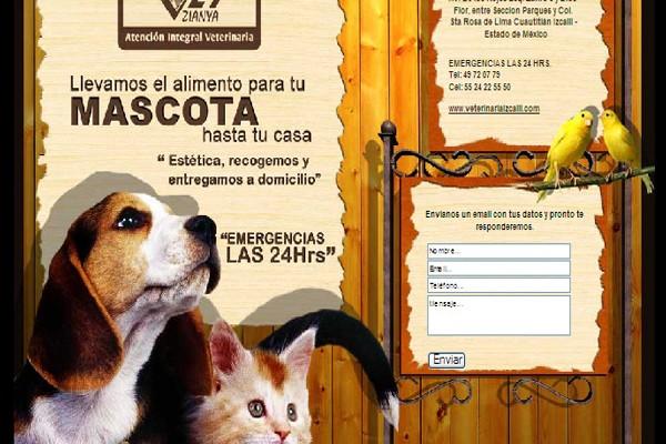 Diseño web veterinaria