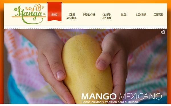 reymango_com